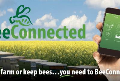 Una nuova app per l'apicoltura.