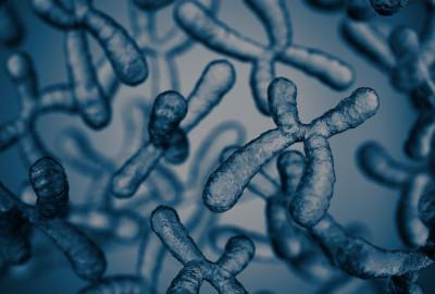 L'accordo tra Meiogenix e Bayer punta a incrementare la differenziazione genetica delle colture