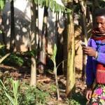 Degli smartphone per aiutare la produzione agricola.