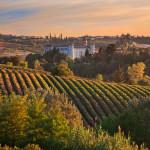 Una vetrina per il settore vitivinicolo italiano