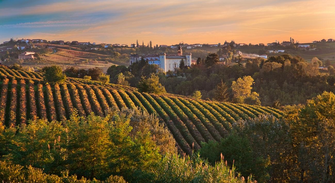 Wineproitaly offre un'importante vetrina per il settore vitivinicolo italiano.