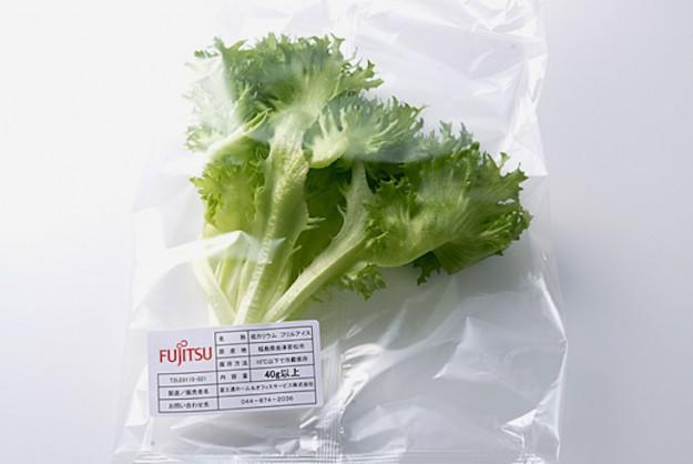 La lattuga commercializzata da Fujitsu.