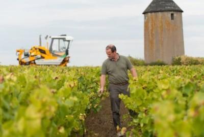 Con il programma Déphy, gli agricoltori francesi cercano di azzerare il ricorso ai pesticidi.