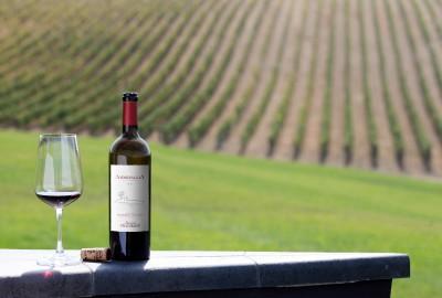 I produttori di Morellino di Scansano hanno deciso di applicare nuove tecnologie smart al processo di vinificazione.