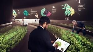 Nel nuovo Fico Eataly World di Bologna sarà possibile coltivare una pianta grazie ad un'app connessa ad internet