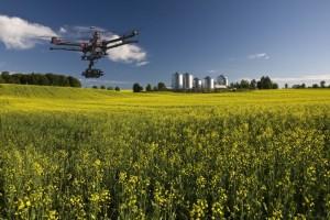 A Terra madre si parla di innovazione e assunzioni nel settore agricolo