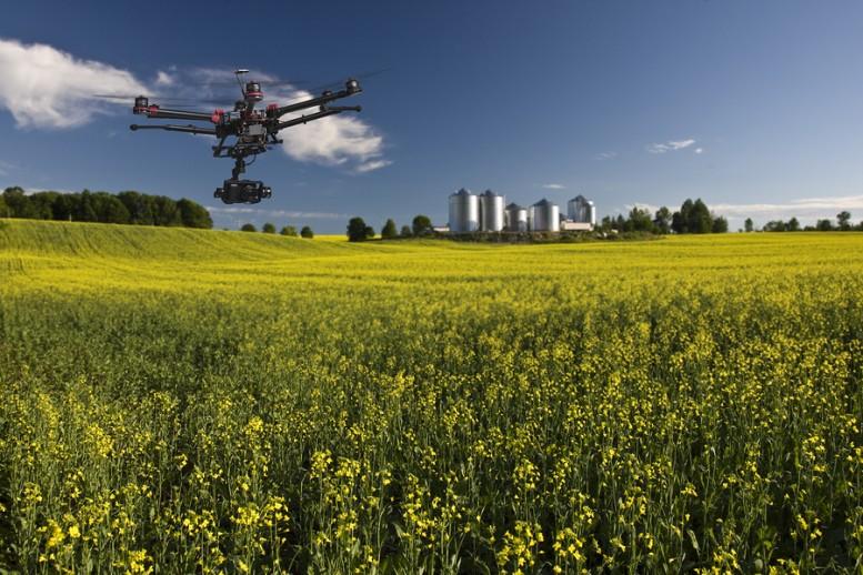 A Terra Madre si parla di innovazione e assunzioni nel settore agricolo.